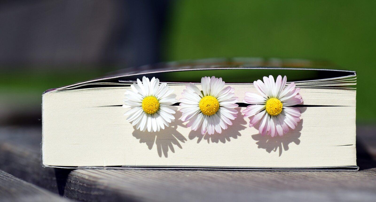 raamat, mille vahel kolm lille
